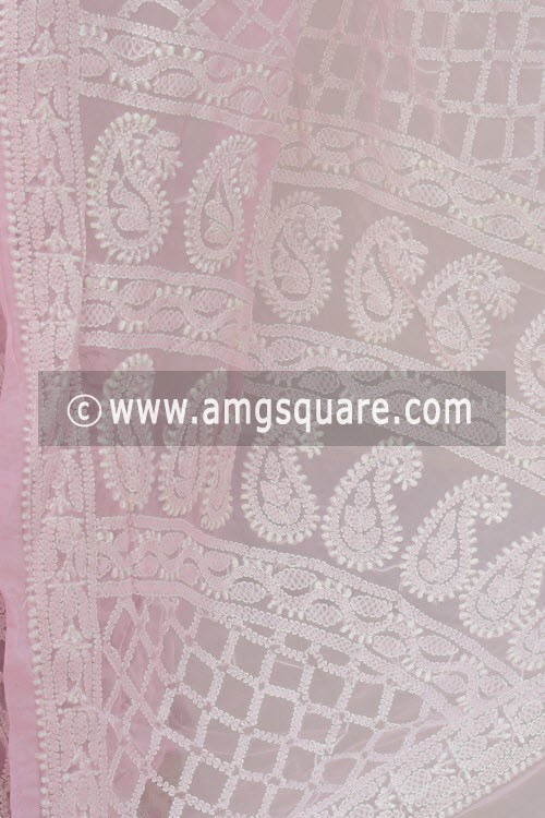 Baby Pink Designer Hand Embroidered Lucknowi Chikankari Saree (With Blouse - Georgette) Skirt Border 14634
