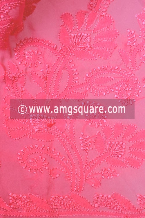 Pink Shaded Hand Embroidered Lucknowi Chikankari Saree (With Blouse - Viscose) 14624