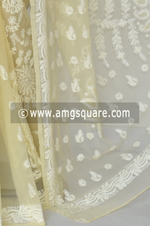 TBeige Hand Embroidered Lucknowi Chikankari Saree (With Blouse - Georgette) 14490