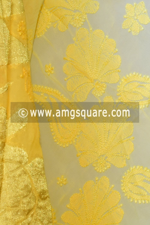 Yellow Shaded Hand Embroidered Lucknowi Chikankari Saree (With Blouse - Viscose) Zari Border 14884