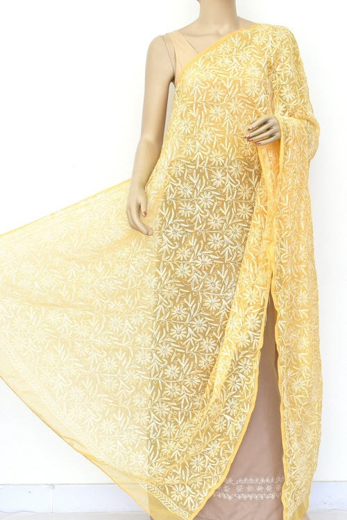 Fawn Hand Embroidered Allover Tepchi Work Lucknowi Chikankari Dupatta (Faux Georgette) 18044